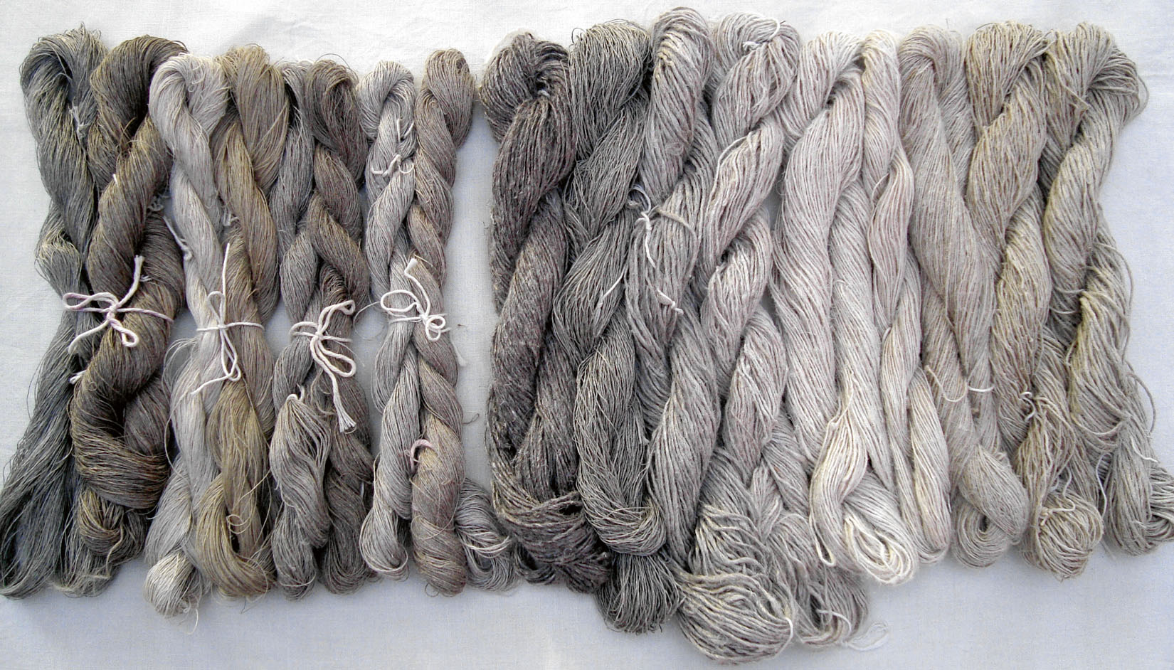 Flax, from Seed to Linen Yarn | Journal for Weavers Spinners and Dyers