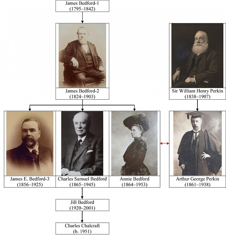 Bedford Family Tree