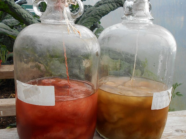 Solar dyeing in my polytunnel - results!